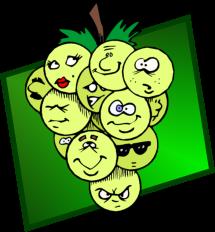 Fruchtalarm Kinderbibelwoche